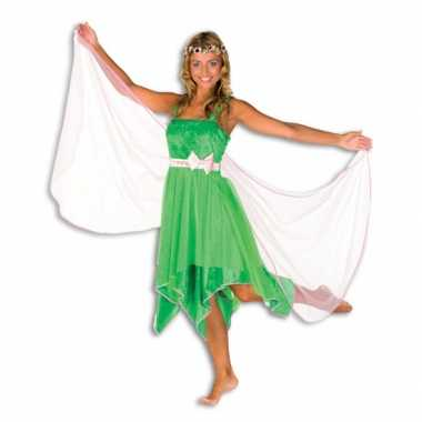 Carnavalskleding groene elfen jurk dames goedkoop